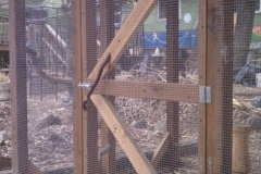 Chicken fortress door